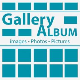 Gallery Album